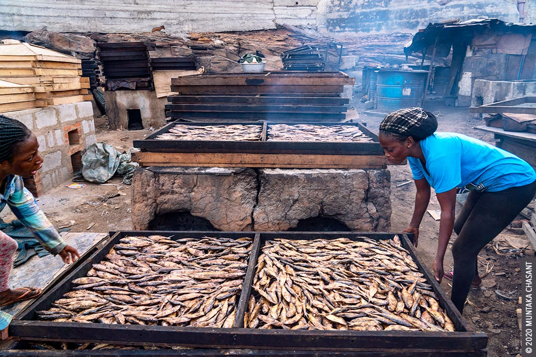Fish processing in Ghana: Migrant Fante fishers use chorkor even to smoke sardinella fish (Amane) in Accra, Ghana. Copyright © 2020 Muntaka Chasant