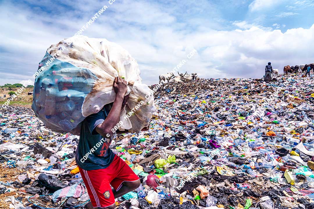 Plastic recycling: Over 7.8 billion plastic has been produced cumulatively since 1950. Only 20% of the plastic waste generated worldwide in 2015 was recycled. Copyright © 2020 Muntaka Chasant