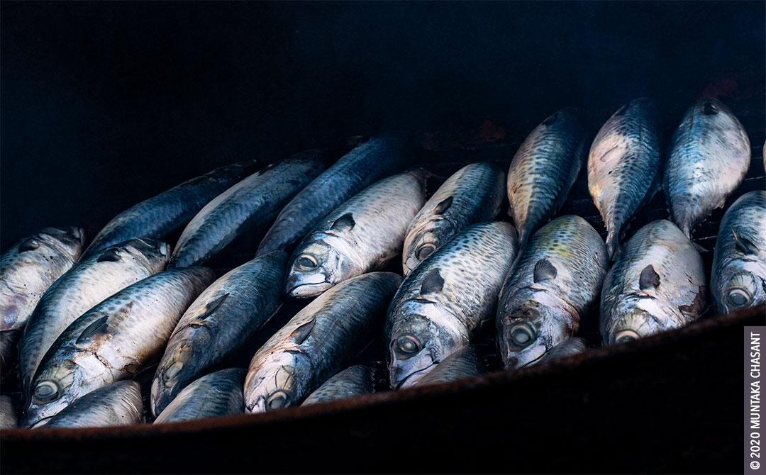 Smoking tuna fish, Jamestown, Accra, Ghana. Copyright © 2020 Muntaka Chasant
