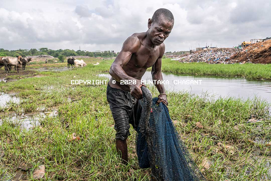 Fisheries and Aquaculture in Ghana: Poor fisherman has just caught a catfish in a heavily polluted environment. Korle Lagoon, Accra, Ghana. He does this due to Ghana's plastic waste crisis. Copyright © 2020 Muntaka Chasant