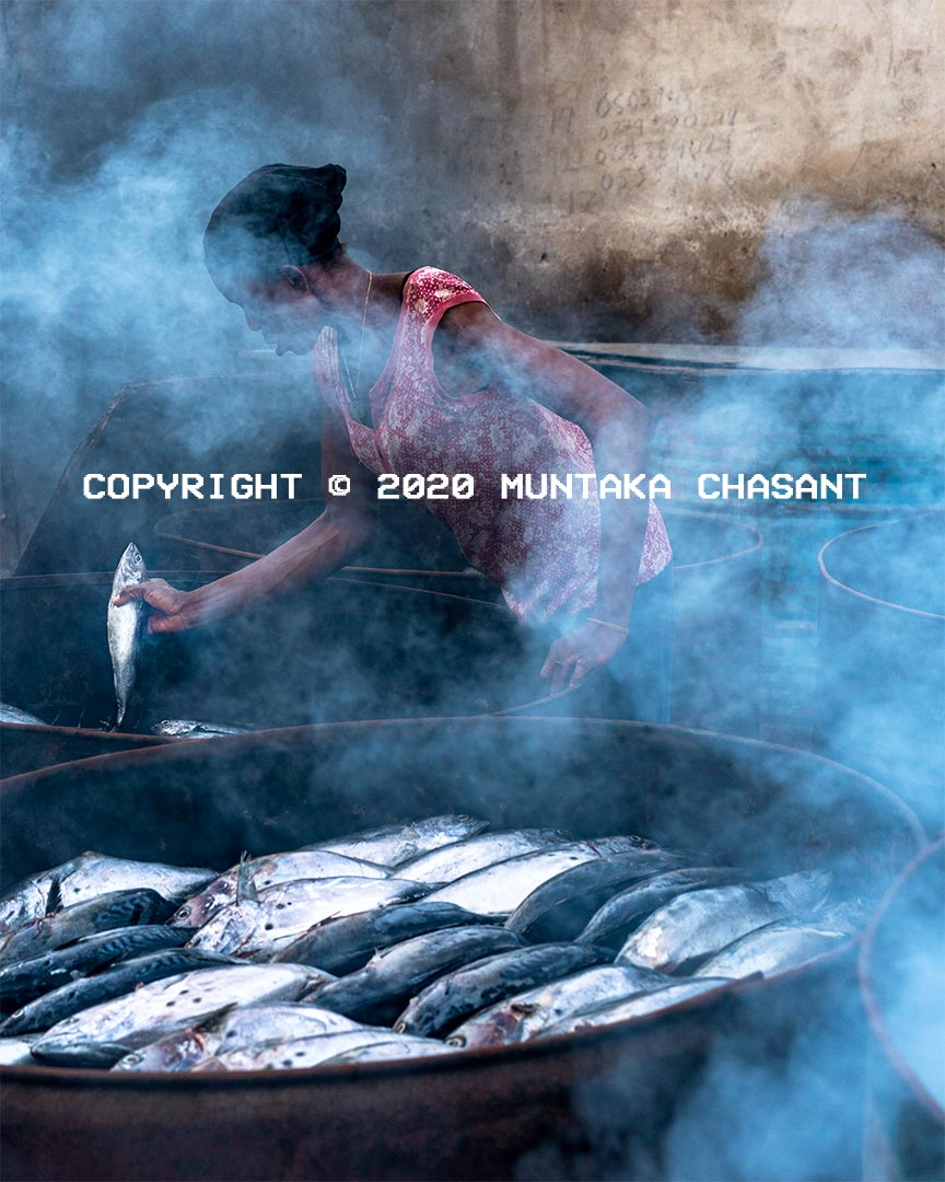 Fish smoking in Ghana: A woman uses metal drum kilns to smoke tuna fish in Accra, Ghana. Using traditional kilns to smoke fish exposes fish smokers to substances such as polycyclic aromatic hydrocarbons (PAHs), fine particles, and carbon monoxide. PAHs are known carcinogens and have been linked to skin, lung, and several other cancers. Copyright © 2020 Muntaka Chasant