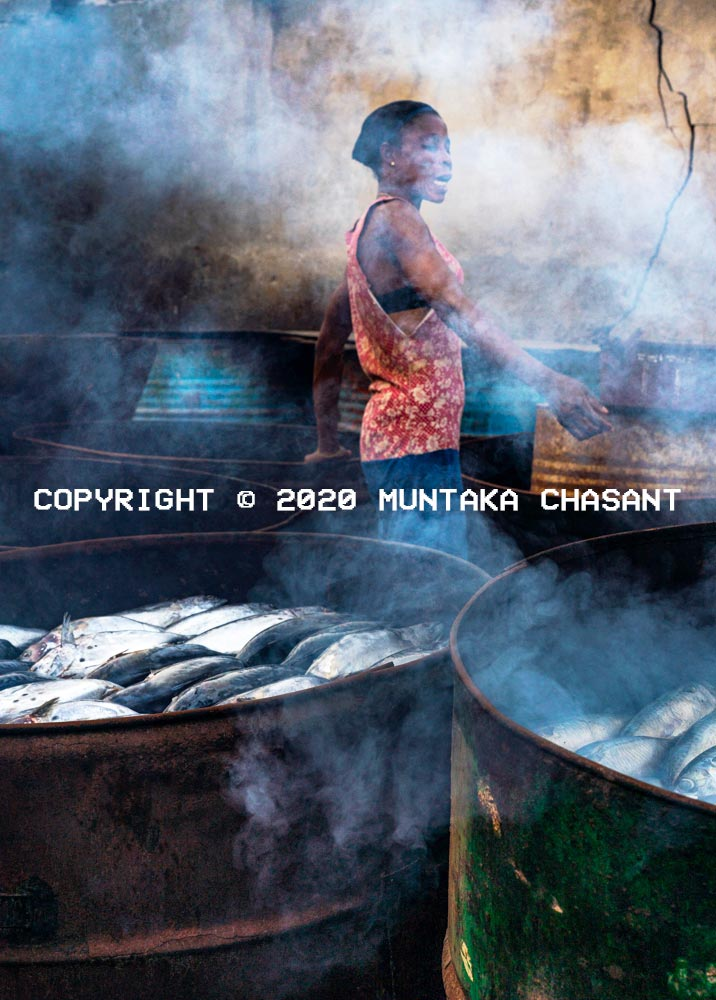 Metal drum kilns for fish smoking in Ghana: Fish smoker stands in the middle of traditional metal drum kilns she is using to smoke fish in Accra, Ghana. Copyright © 2020 Muntaka Chasant