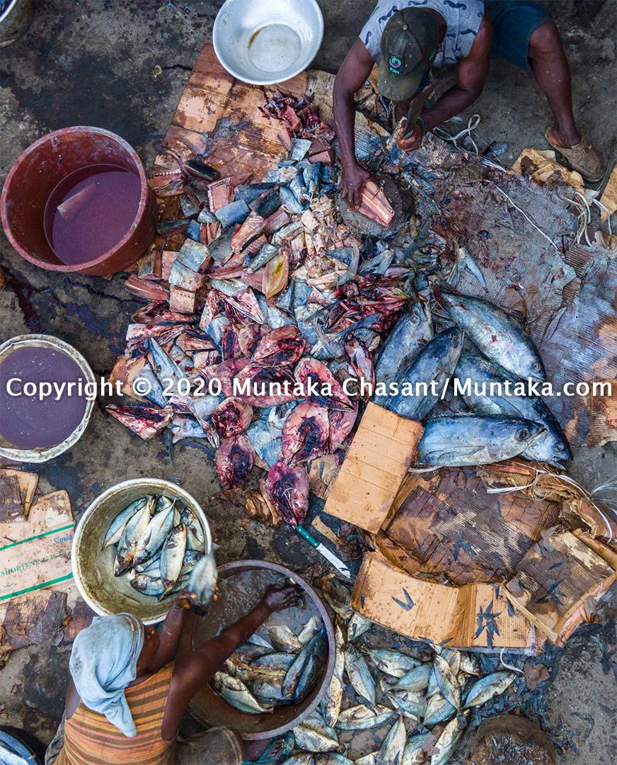 Man and woman process fish in Ghana. Copyright © 2020 Muntaka Chasant