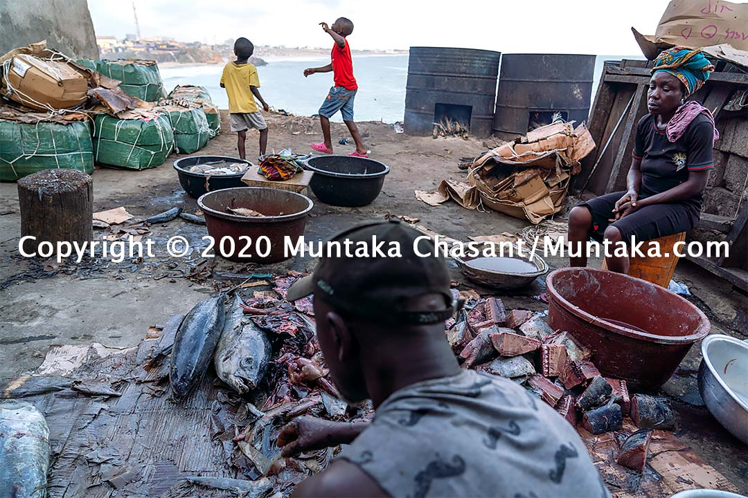 Man process yellowfin tuna in Accra, Ghana. Copyright © 2020 Muntaka Chasant