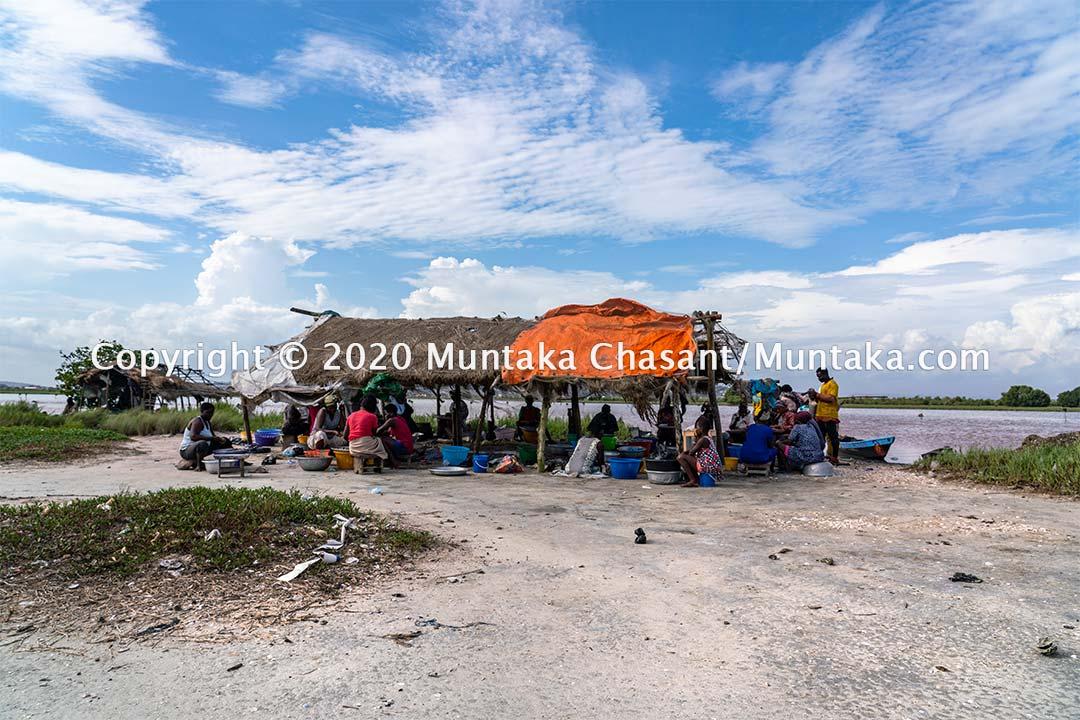 Urban poor fish processors in Accra, Ghana. Copyright © 2020 Muntaka Chasant