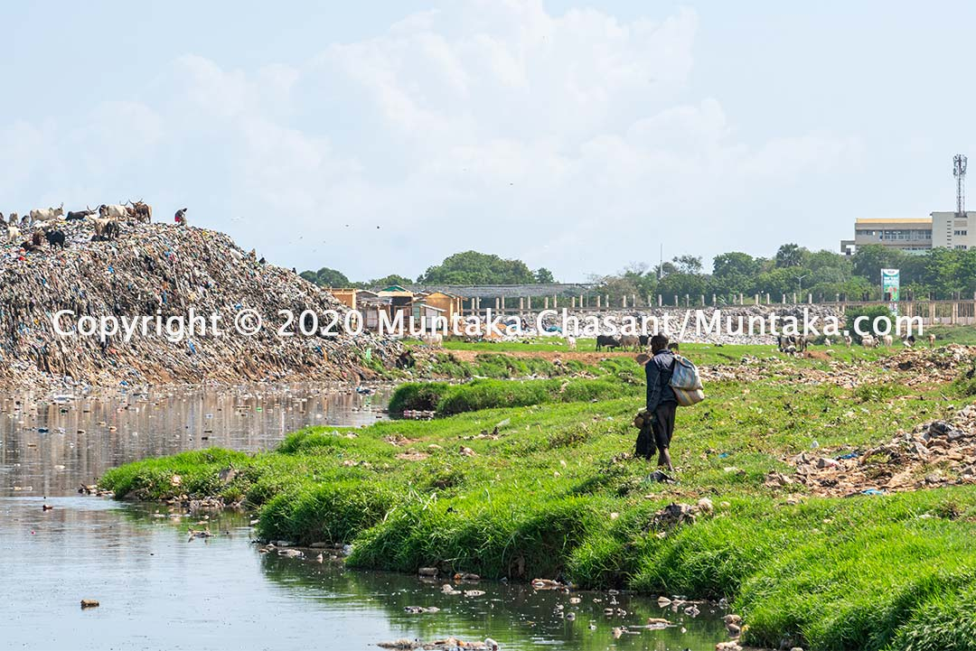 Pollution, fisheries, and urban poverty in Ghana. Copyright © 2020 Muntaka Chasant