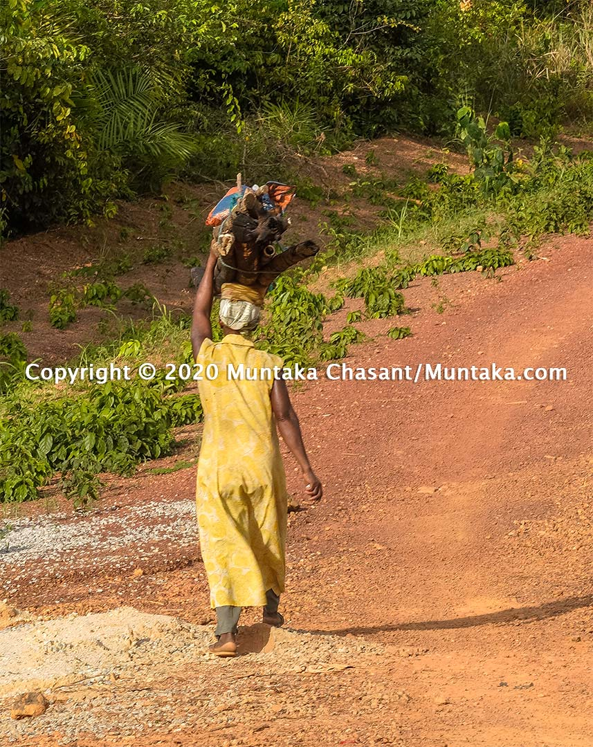 A rural poor woman in Ghana from the farm transports fuelwood on her head and walks on a dirt road. Copyright © 2020 Muntaka Chasant