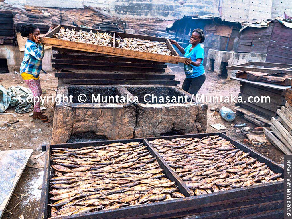 Chorkor oven: Two women smoke fish using the chorkor smoker in Accra, Ghana. The chorkor oven is known to expose fish smokers and consumers to polycyclic aromatic hydrocarbons, carcinogens linked to skin, lung, and stomach cancers. Copyright © 2020 Muntaka Chasant