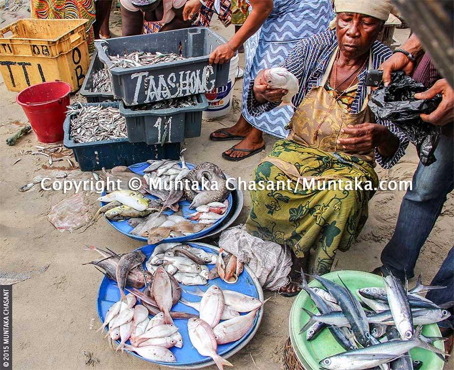 Fish selling in Ghana: An elderly woman sells fresh fish at the Jamestown fish landing site in Accra, Ghana. Copyright © 2015 Muntaka Chasant