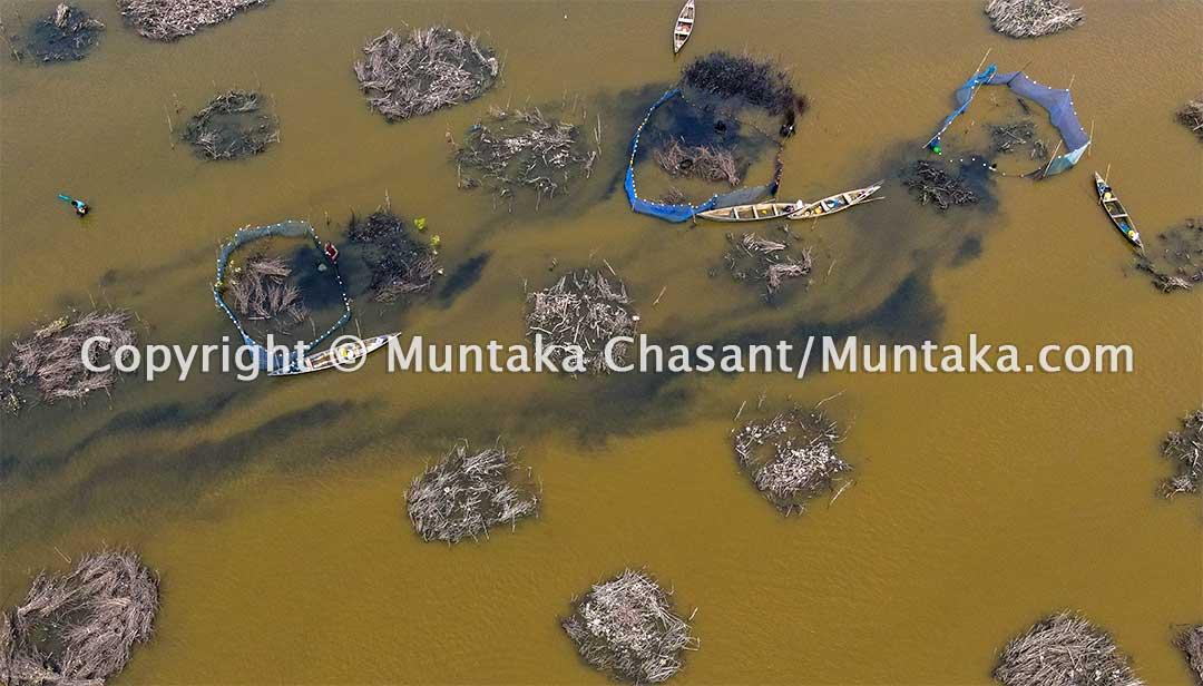 """Aerial view of """"Atidza"""" mangrove brush park fishing in Ghana. Copyright © 2020 Muntaka Chasant"""