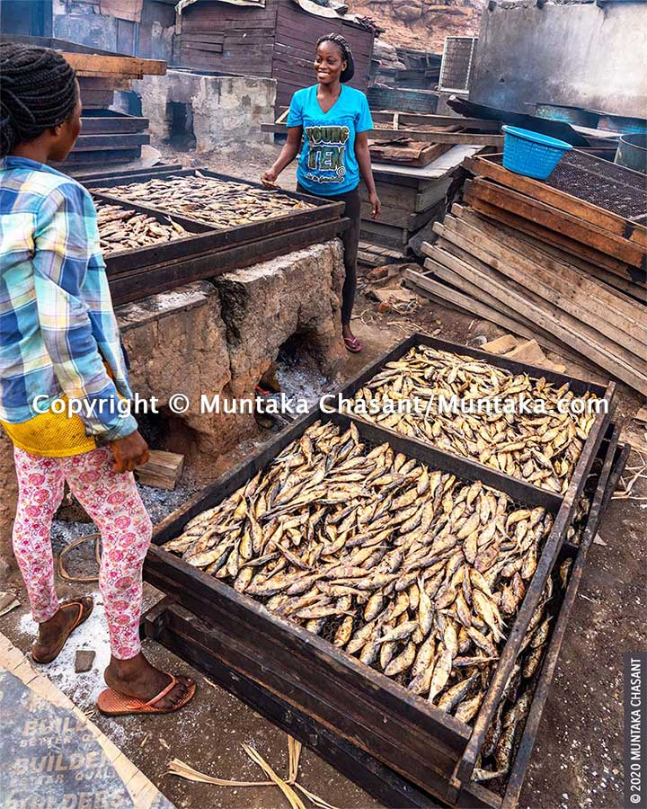 Fante migrant fish processors use chorkor oven to smoke fish in Accra, Ghana. More than 2.5 million Ghanaians depend on the fisheries sector for their livelihoods, according to the FAO. Copyright © 2020 Muntaka Chasant