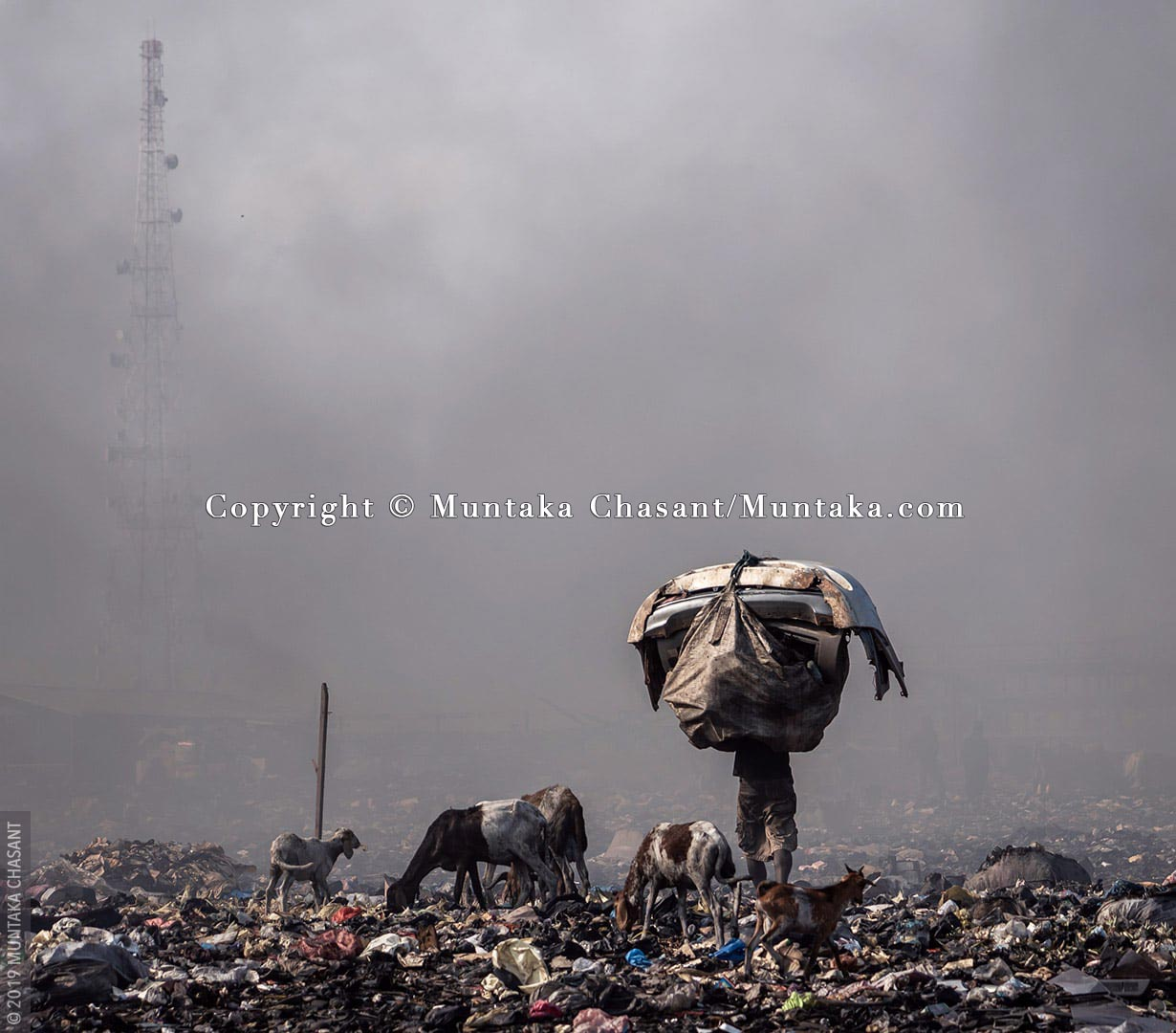 Man walks through a wall of smoke caused by the burning of waste cables while carrying auto body parts on his head on the Agbogbloshie e-waste dump in Agbogbloshie, Ghana. Sheep and goats can also be seen foraging. Their meat ends up in Ghana's food chain, and researchers fear they may be contaminated. © 2019 Muntaka Chasant