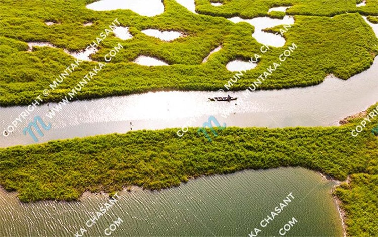 Coming soon: Wetlands and People (A Project)
