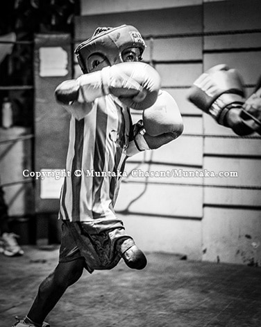 Ongoing: A Boxing Ethnography