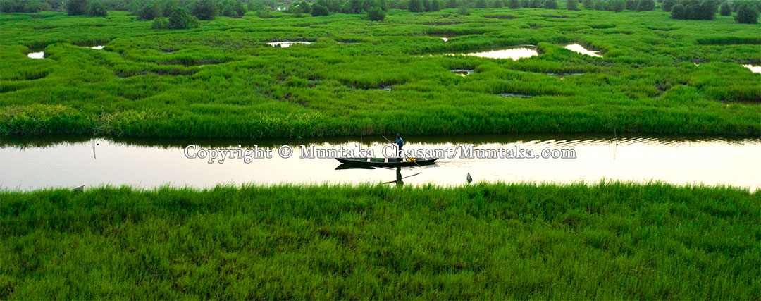 Fisherman rowing his canoe in a wetland under anthropogenic and climate-related pressures.